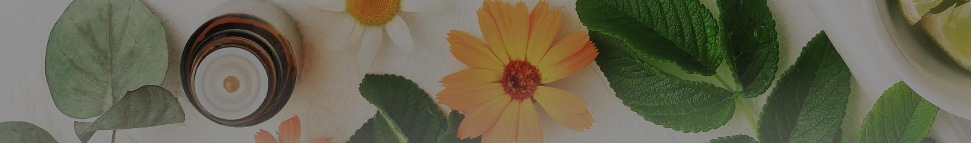 liście i kwiaty